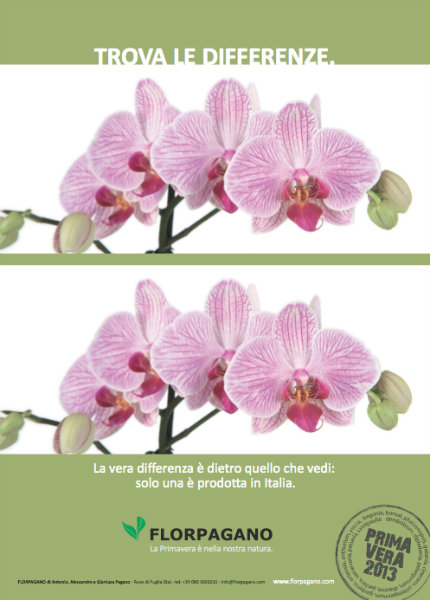 campagna pubblicitaria stampa | raffaelemagrone.it