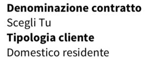 Denominazione contratto Enel e tipologia cliente domestico residente