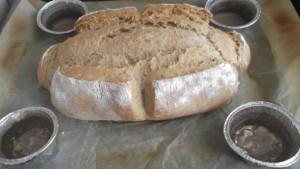 pane sfornato con contenitori acqua | raffaelemagrone.it